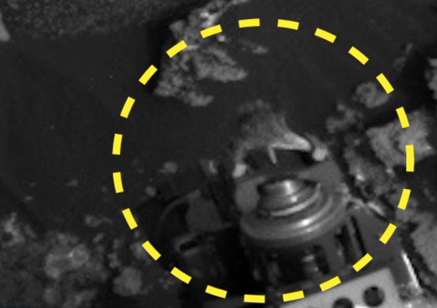 Lagarto extraterrestre na sonda Curiosity