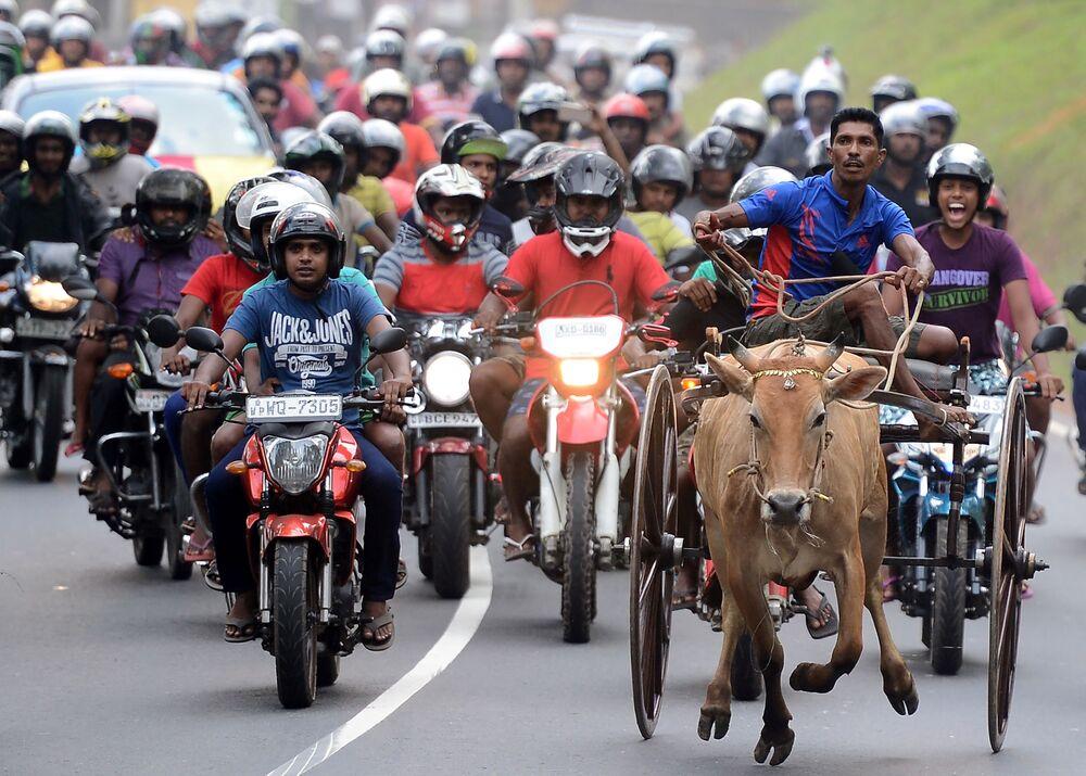 Participantes da corrida em homenagem ao Ano Novo, Sri Lanka
