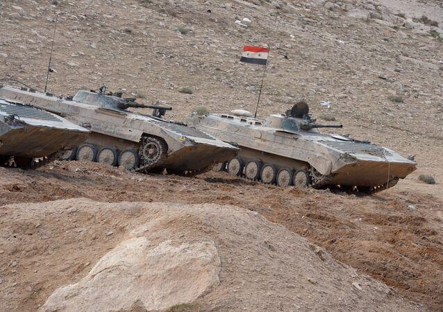 Veículos de combate de infantaria do exército sírio perto de Palmira
