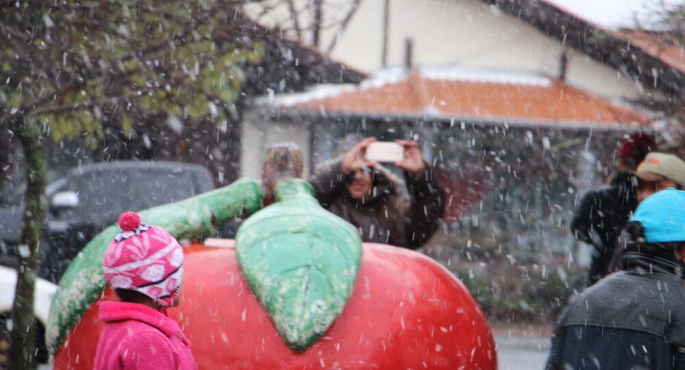 Neve em São Joaquim (SC)