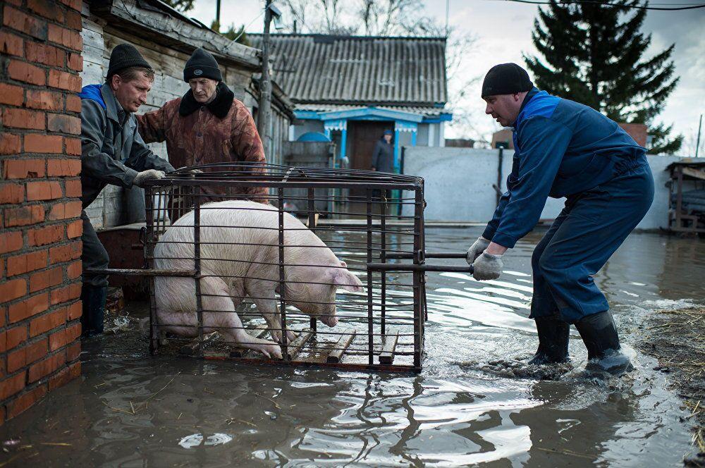 As enchentes de primavera, do fotojornalista russo Aleksei Malgavko