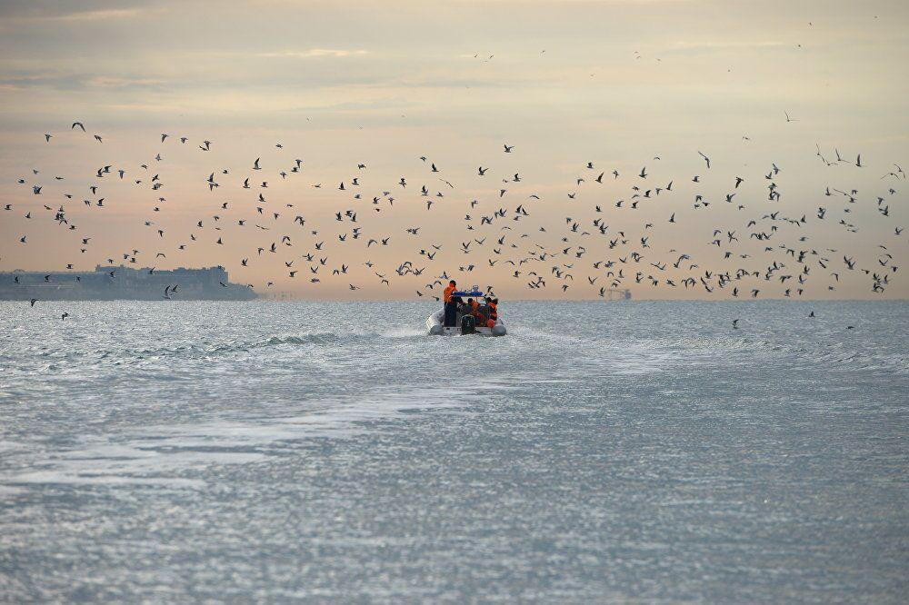 Operação de busca do Ministério para Situações de Emergência, do fotógrafo russo Artur Lebedev