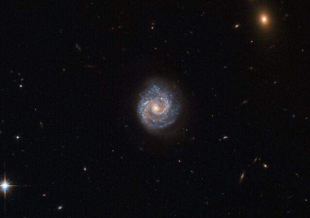 Imagem da galáxia 2XMM J143450.5+033843 tirada pelo telescópio espacial Hubble