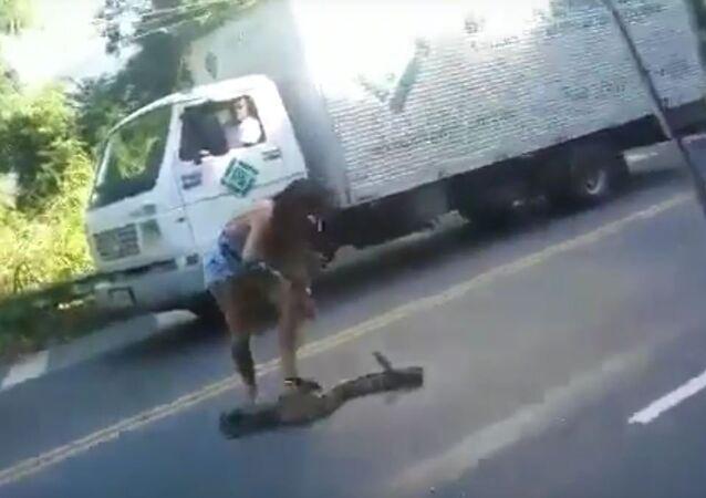 Brasileira intrépida pega serpente para desimpedir tráfego