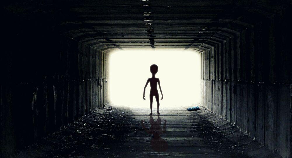 Um extraterrestre (imagem referencial)