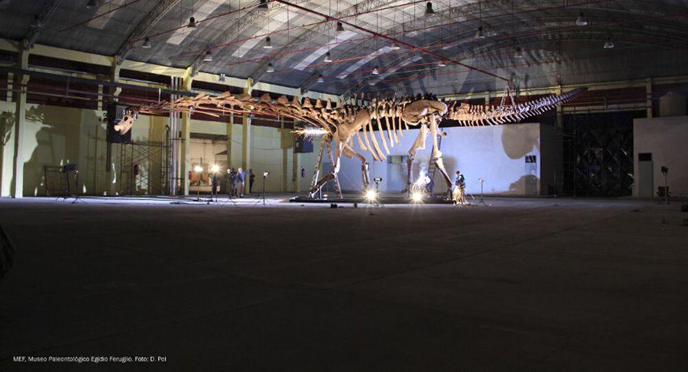 Patagotitan, supostamente, o maior animal que já habitou a Terra