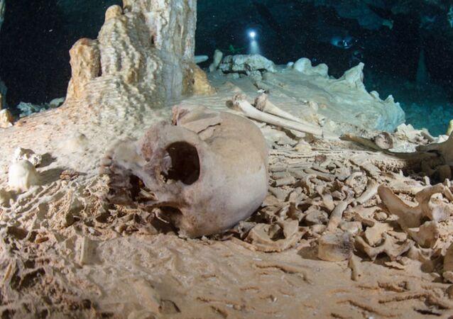 Crâneo encontrado na caverna Chan Hol, península de Iucatã (México)