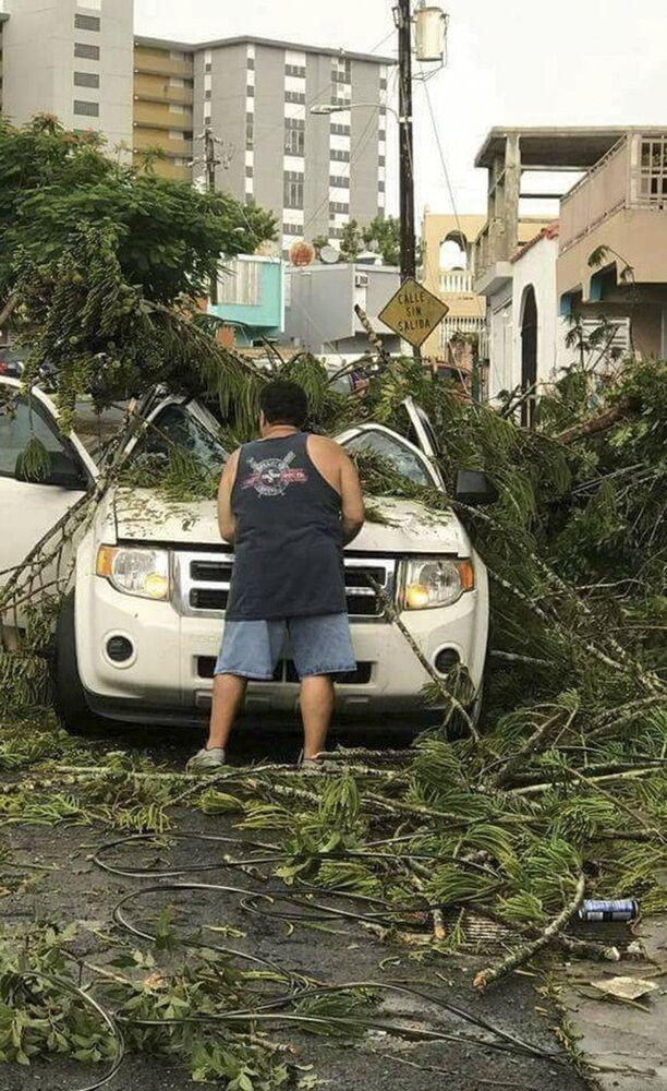 As consequências do furacão Irma: árvores caídas e carros danificados