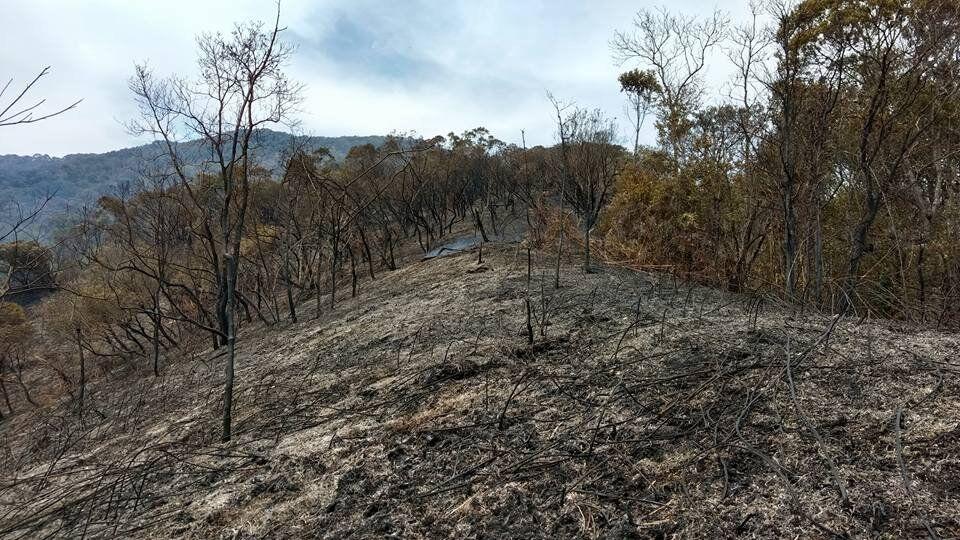 Segundo o Corpo de Bombeiros, o fogo foi controlado, mas ainda há focos do incêndio na região.