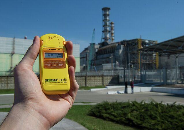 Zona exclusiva de Chernobyl na véspera do 27o aniversário do desastre