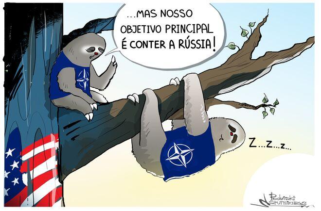 Bicho-preguiça da OTAN estaria sonhando muito alto?
