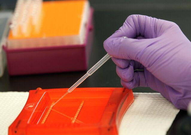 Cientista trabalhando com amostras de DNA
