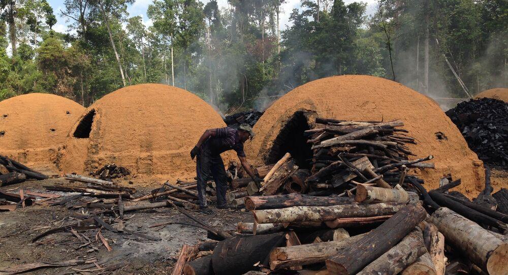 Carvoaria flagrada utilizando trabalho escravo no Pará.