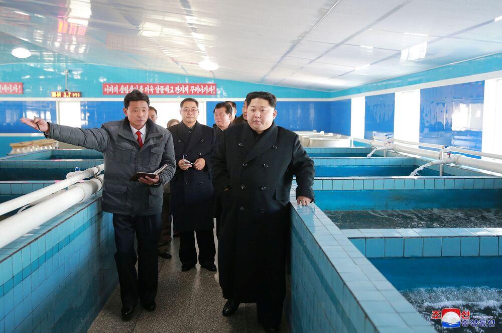 Ao lado de outros políticos, Kim Jong-un visitou uma criação de bagres.